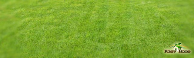 стрижка газону в Києві