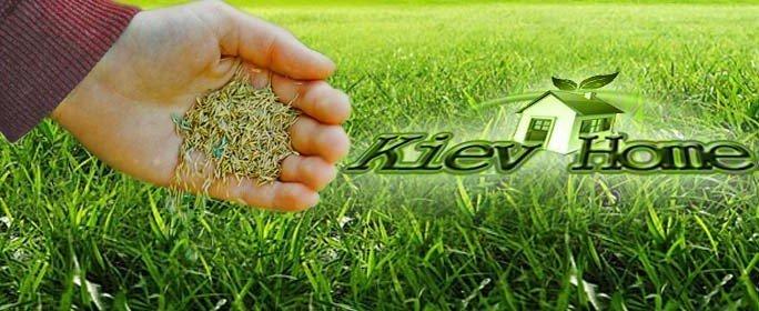посев семян газона