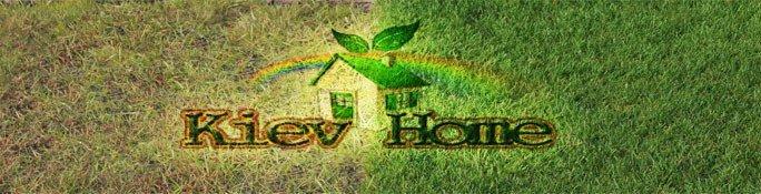 ремонт и восстановление газона