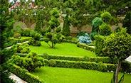 Полив і озеленення ділянки в Обухові