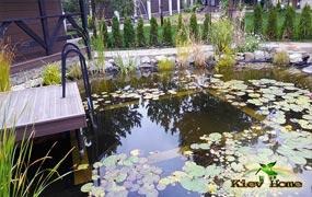 Купальный пруд под Киевом